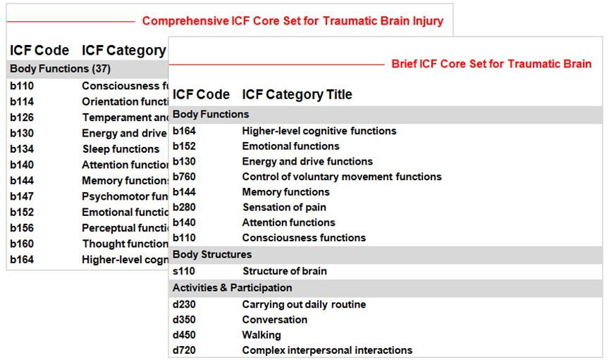 ICF_Core_Sets__Image